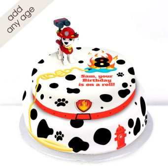 Any Age Paw Patrol Marshall Cake