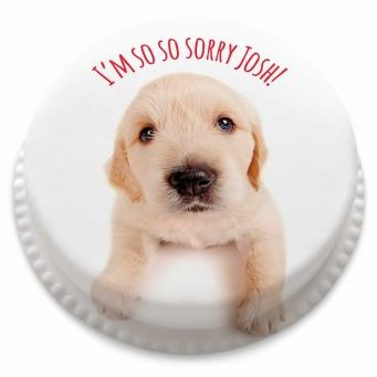 Puppy Apology Cake