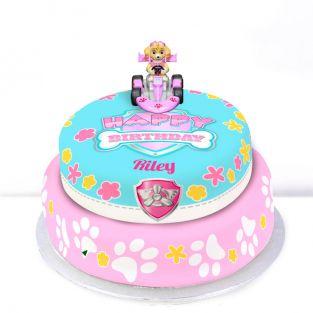 Tiered Paw Patrol Skye Cake