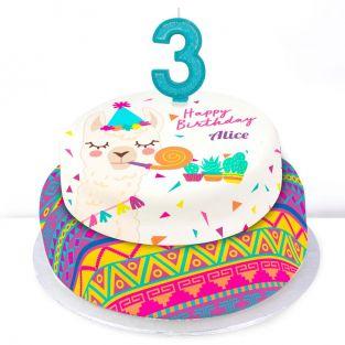 3rd Birthday Party Llama Cake
